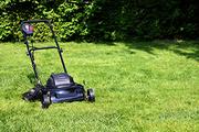 Commercial Garden Maintenance Hampshire | Garden Maintenance